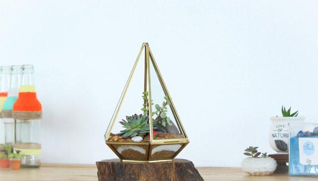 Succulent Glass Terrarium.jpg